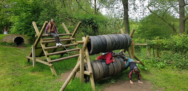 Assault course at Glenny Wood