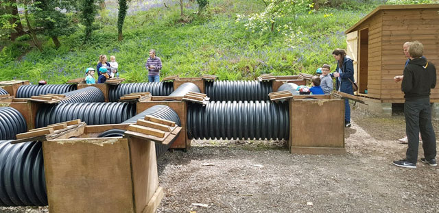Tube maze at Glenny Wood